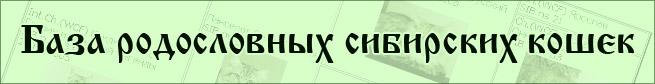 <h1>База родословных сибирских кошек</h1>