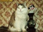 Луша Чинги-Тура (фото)