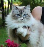 Олеся (фото)