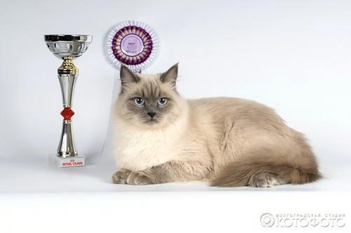 Масяня of Каспийский Сувенир (фото)