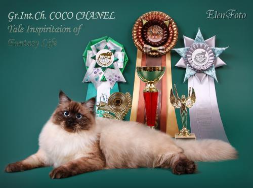 Коко Шанель Волшебное Вдохновение (фото)